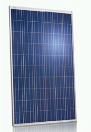 JinkoSolar for the Australian Market