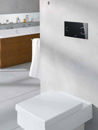 Concealed Cisterns & Flushing Plates from Viega