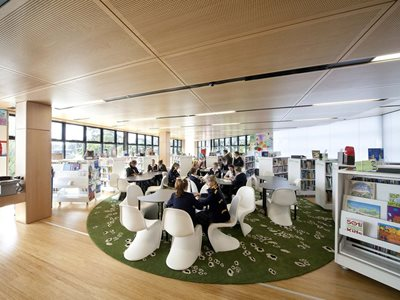 school library acoustic timber ceiling tiles