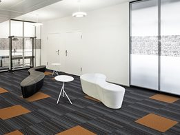 Byline and Zipline Carpet Tiles with EcoSoft ® Backing