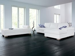 Natural engineered wood