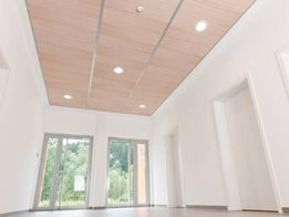 THERMATEX VARIOLINE Ceiling design in a new light