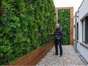 Hedge walls from Evergreen Walls offer a practical alternative to real hedges