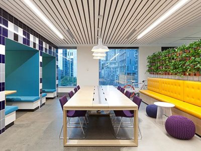 office interior white timber ceiling slats