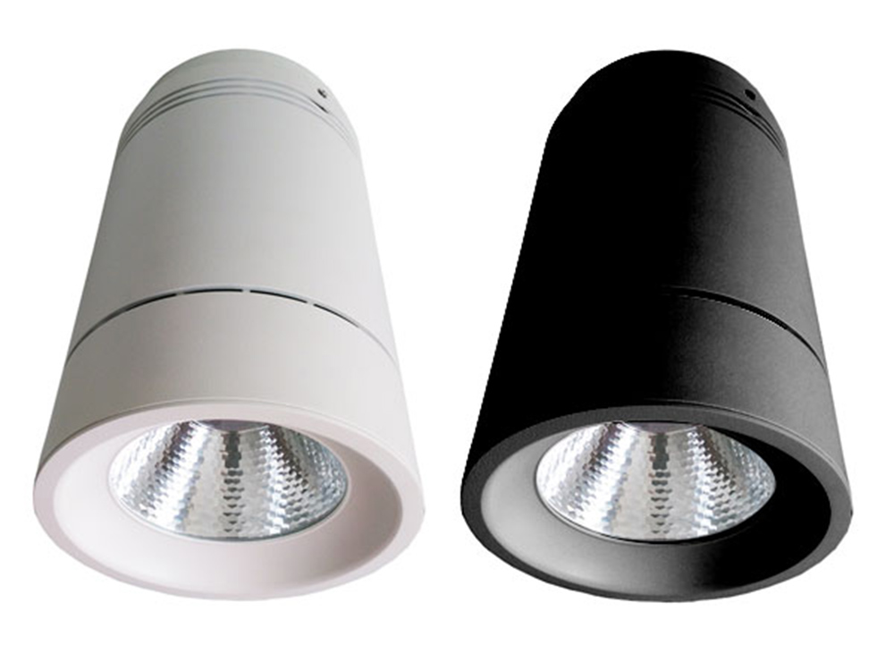Detailed Shot of Black and White Surface Mounted Lights