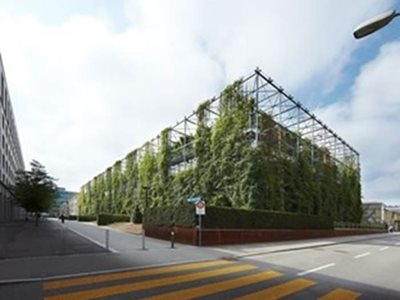 large commercial structure green folliage facade