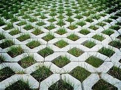 Grass Pavers1