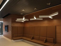 DecorLini: Linear acoustic planks