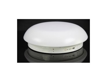 Oyster LED emergency light - ELS-EMR15LED